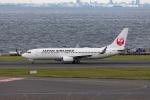 Arvinedさんが、羽田空港で撮影した日本航空 737-846の航空フォト(写真)