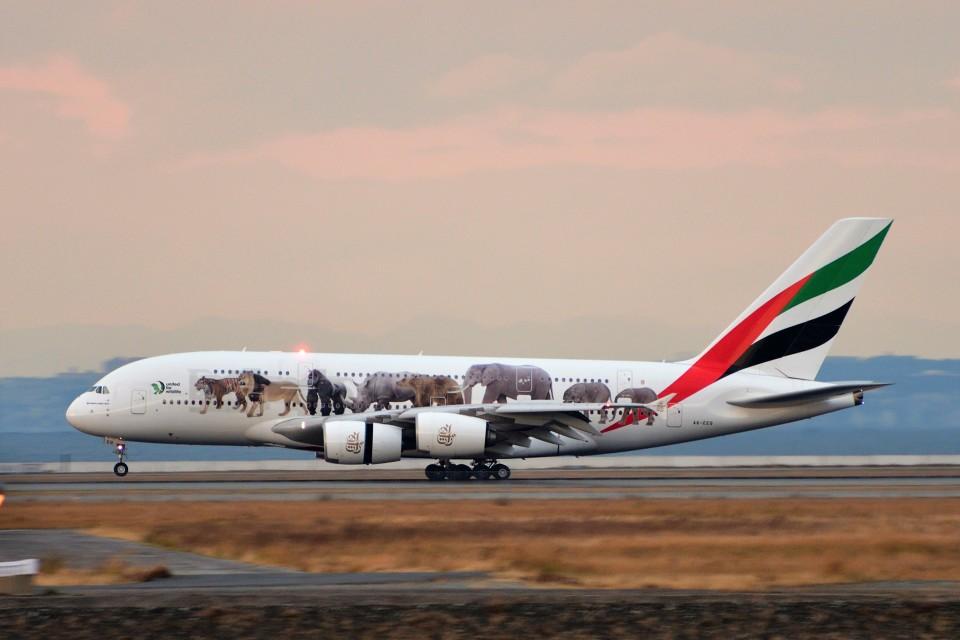 T.Sazenさんのエミレーツ航空 Airbus A380 (A6-EEQ) 航空フォト