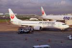 ちゃぽんさんが、羽田空港で撮影したJALエクスプレス 737-846の航空フォト(飛行機 写真・画像)