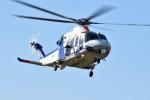 ヘリオスさんが、東京ヘリポートで撮影したオールニッポンヘリコプター AW139の航空フォト(写真)