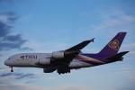 JA8037さんが、成田国際空港で撮影したタイ国際航空 A380-841の航空フォト(写真)