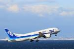 ゆなりあさんが、中部国際空港で撮影した全日空 787-8 Dreamlinerの航空フォト(写真)
