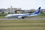 kumagorouさんが、宮古空港で撮影した全日空 737-881の航空フォト(写真)