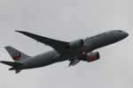imosaさんが、羽田空港で撮影した日本航空 787-8 Dreamlinerの航空フォト(写真)