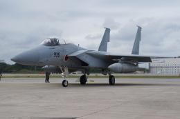 sukiさんが、那覇空港で撮影した航空自衛隊 F-15J Eagleの航空フォト(写真)