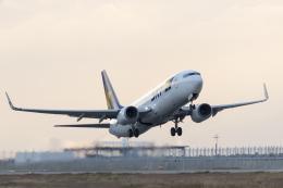 ShiShiMaRu83さんが、神戸空港で撮影したスカイマーク 737-8ALの航空フォト(飛行機 写真・画像)