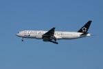レドームさんが、羽田空港で撮影した全日空 777-281の航空フォト(写真)