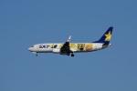 レドームさんが、羽田空港で撮影したスカイマーク 737-8FHの航空フォト(写真)
