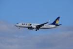 レドームさんが、羽田空港で撮影したスカイマーク 737-8ALの航空フォト(写真)