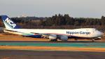 誘喜さんが、成田国際空港で撮影した日本貨物航空 747-8KZF/SCDの航空フォト(写真)
