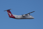 かずまっくすさんが、シドニー国際空港で撮影したサンステート・エアラインズ DHC-8-315Q Dash 8の航空フォト(写真)