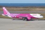 HEATHROWさんが、新潟空港で撮影したピーチ A320-214の航空フォト(写真)