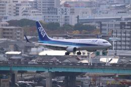 John Doeさんが、福岡空港で撮影した全日空 737-881の航空フォト(飛行機 写真・画像)