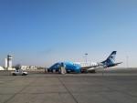 BTYUTAさんが、ルクソール国際空港で撮影したエジプト航空 エクスプレス ERJ-170-100 LR (ERJ-170LR)の航空フォト(写真)