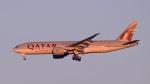 パンダさんが、成田国際空港で撮影したカタール航空カーゴ 777-FDZの航空フォト(飛行機 写真・画像)
