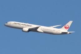 青春の1ページさんが、伊丹空港で撮影した日本航空 787-9の航空フォト(飛行機 写真・画像)