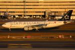 えぬえむさんが、羽田空港で撮影した中国国際航空 A330-243の航空フォト(写真)