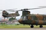 レガシィさんが、宇都宮飛行場で撮影した陸上自衛隊 CH-47Jの航空フォト(写真)