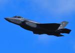 tuco-Gさんが、嘉手納飛行場で撮影したアメリカ空軍 F-35A-3I Lightning IIの航空フォト(写真)