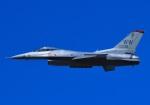 tuco-Gさんが、芦屋基地で撮影したアメリカ空軍 F-16CM-50-CF Fighting Falconの航空フォト(写真)