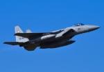 tuco-Gさんが、新田原基地で撮影した航空自衛隊 F-15J Eagleの航空フォト(写真)