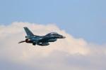 レガシィさんが、入間飛行場で撮影した航空自衛隊 F-2Bの航空フォト(写真)