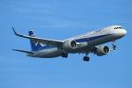 ceskykrumlovさんが、羽田空港で撮影した全日空 A321-272Nの航空フォト(写真)