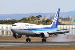 suu451さんが、伊丹空港で撮影した全日空 737-8ALの航空フォト(写真)