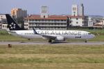 sumihan_2010さんが、宮古空港で撮影した全日空 737-881の航空フォト(写真)