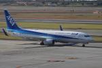 神宮寺ももさんが、伊丹空港で撮影した全日空 737-881の航空フォト(写真)