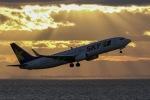 まさポンさんが、中部国際空港で撮影したスカイマーク 737-86Nの航空フォト(写真)