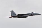 ばとさんが、茨城空港で撮影した航空自衛隊 F-15J Eagleの航空フォト(写真)