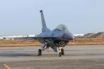 プラグマニアさんが、築城基地で撮影したアメリカ空軍 F-16CM-50-CF Fighting Falconの航空フォト(写真)