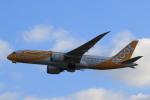 rokko2000さんが、関西国際空港で撮影したスクート 787-8 Dreamlinerの航空フォト(写真)