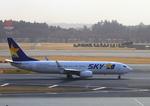 ふじいあきらさんが、成田国際空港で撮影したスカイマーク 737-86Nの航空フォト(写真)