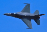 tuco-Gさんが、岩国空港で撮影したアメリカ空軍 F-16CM-50-CF Fighting Falconの航空フォト(写真)