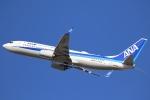 やまけんさんが、仙台空港で撮影した全日空 737-8ALの航空フォト(写真)