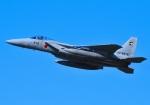 tuco-Gさんが、築城基地で撮影した航空自衛隊 F-15J Eagleの航空フォト(写真)