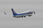 kuro2059さんが、中部国際空港で撮影した全日空 737-781の航空フォト(写真)