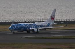kuro2059さんが、中部国際空港で撮影した日本トランスオーシャン航空 737-8Q3の航空フォト(写真)