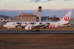 tmkさんが、伊丹空港で撮影した日本航空 767-346/ERの航空フォト(写真)