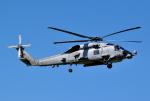 hirohiro77さんが、札幌飛行場で撮影したアメリカ海軍 MH-60R Seahawk (S-70B)の航空フォト(写真)