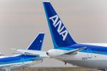 たーぼーさんが、羽田空港で撮影した全日空の航空フォト(写真)