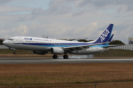 endress voyageさんが、伊丹空港で撮影した全日空 737-881の航空フォト(飛行機 写真・画像)