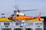 SAMBAR-2463さんが、群馬ヘリポートで撮影した東邦航空 AS350B Ecureuilの航空フォト(写真)