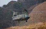 asuto_fさんが、日出生台演習場で撮影した陸上自衛隊 CH-47JAの航空フォト(写真)