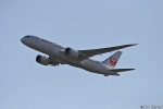 Jin Bergqiさんが、羽田空港で撮影した日本航空 787-8 Dreamlinerの航空フォト(写真)