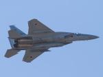 Mame @ TYOさんが、浜松基地で撮影した航空自衛隊 F-15J Eagleの航空フォト(写真)
