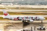 SGR RT 改さんが、羽田空港で撮影した日本航空 767-346/ERの航空フォト(写真)
