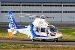 kaeru6006さんが、東京ヘリポートで撮影したオールニッポンヘリコプター AS365N2 Dauphin 2の航空フォト(写真)